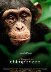 chimpanzee-2012-cover